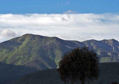 Ruta circular entre los núcleos de Santa Engracia, Javierregay y Puente la Reina